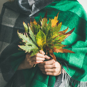 Woman in scarf or blanket with Autumn leaves square crop