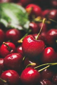 Fresh sweet cherry texture  wallpaper and background  close up