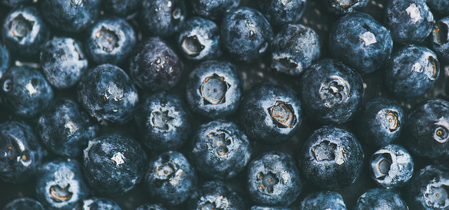 Fresh blueberry background Texture blueberry berries top view