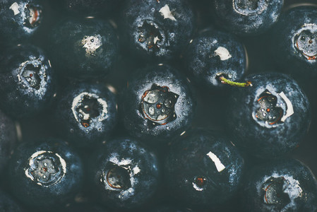 Flat lay of wet dark forest blueberries  top view  horizontal composition