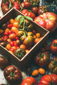 Fresh colorful Fall or Summer heirloom bunch and cherry tomatoes