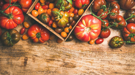 Flat  lay of fresh colorful tomatoes over wooden background