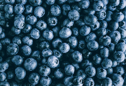 Fresh huckleberry full frame food background The concept of healthy food and summer eating