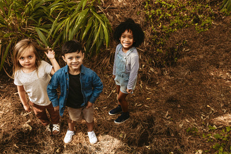 Children playing in forest