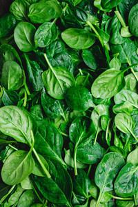 Top view on fresh organic spinach leaves  Healthy green food and vegan background