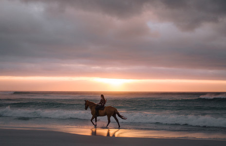 Woman riding horse on the beach in evening