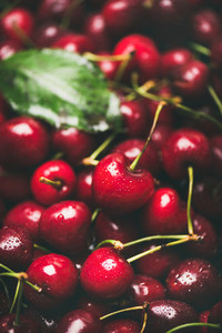 Fresh sweet cherry texture  wallpaper and background  selective focus