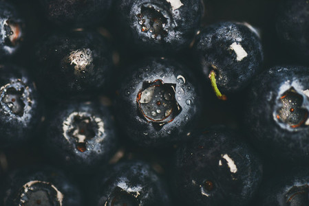 Flat lay of wet dark forest blueberries top view