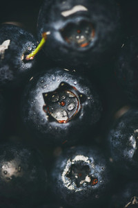 Flat lay of wet dark forest blueberries top view vertical composition
