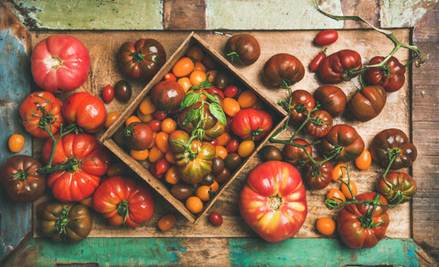 Flat  lay of fresh colorful tomatoes variety on tray