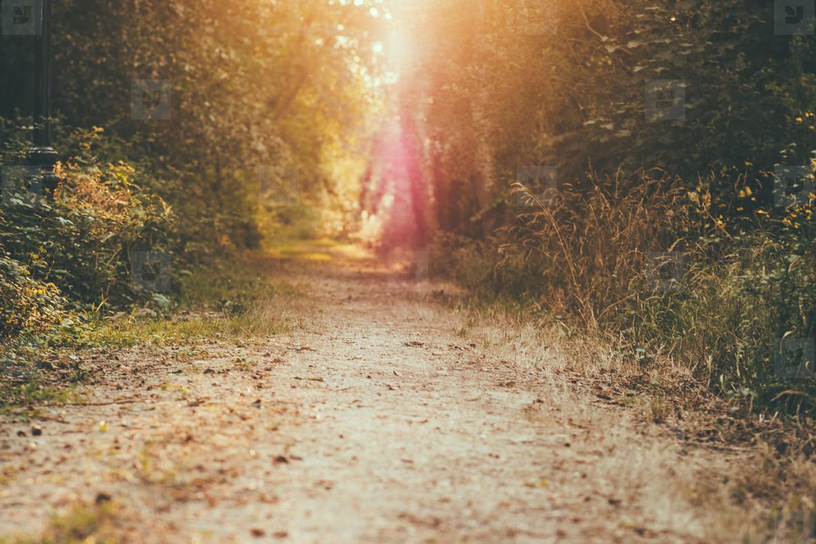 lens flare path