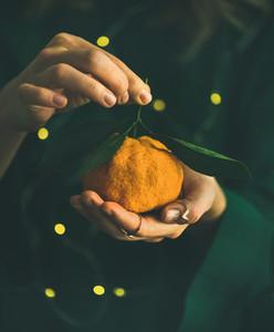 Fresh tangerine fruit in hands of lady wearing green dress