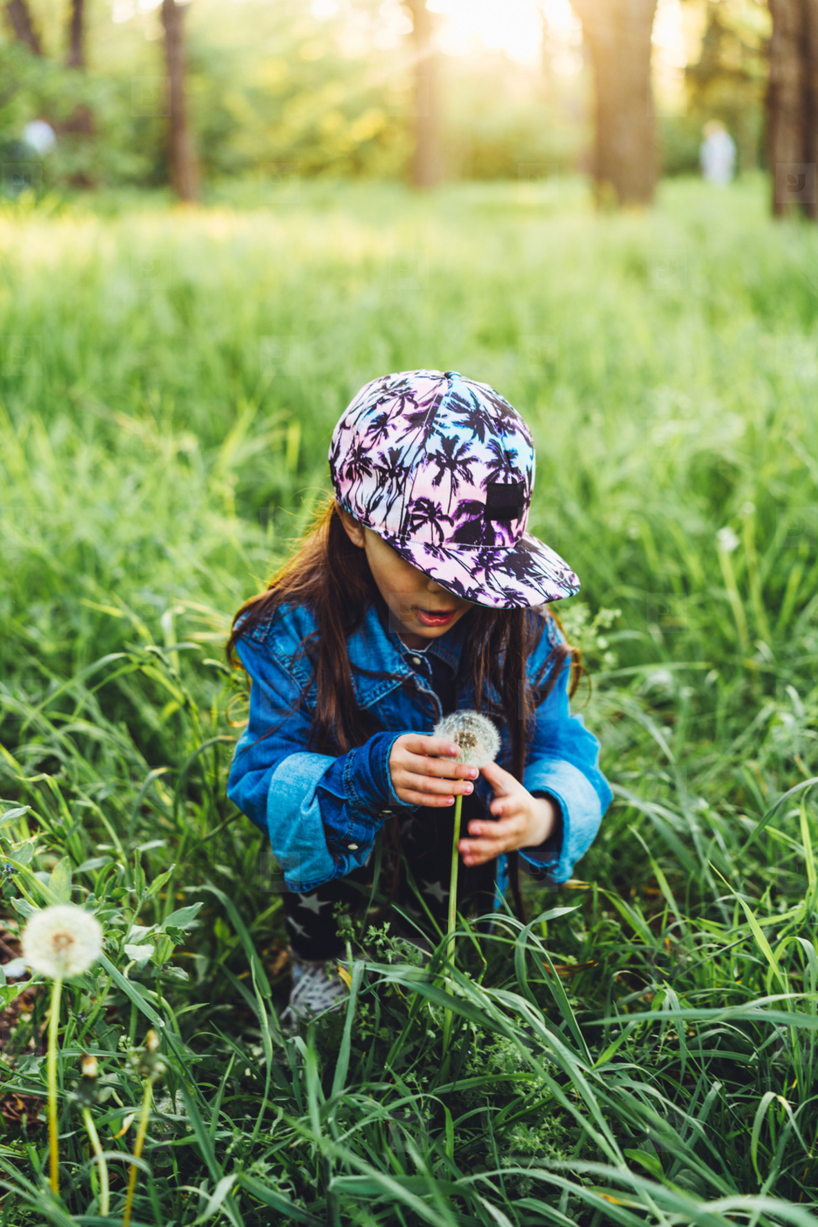 little  beautiful girl on the lawn