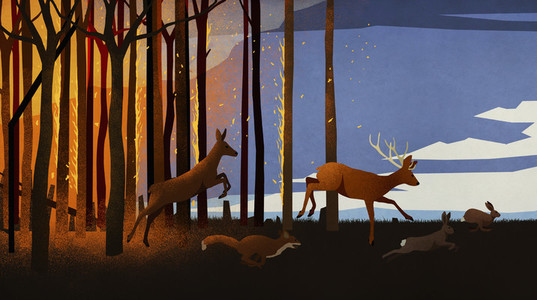 Forest animals running from forest fire at night 01