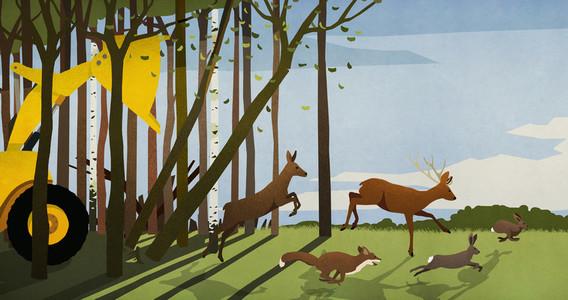 Forest animals running from deforestation bulldozer in woods 01