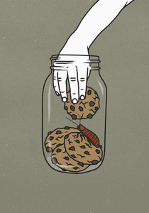 Hand reaching into cookie jar with cockroach 01