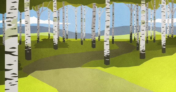 Footpath through trees in idyllic forest 01