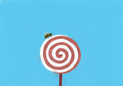 Fly on pinwheel lollipop 01