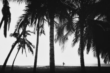 Surfer with surfboard under tall palm trees on tropical ocean beach 01
