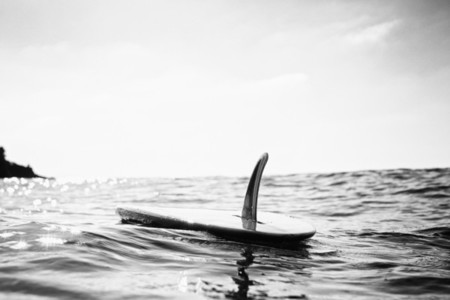 Surfboard with fin floating on sunny ocean water 01