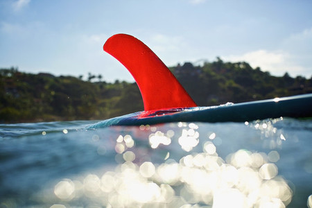 Bright red fin on surfboard floating on sunny ocean 01