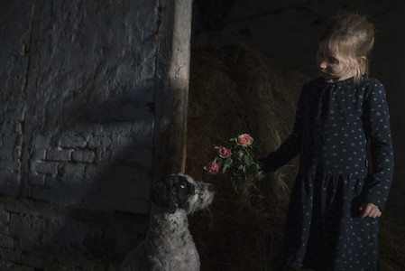 Girl showing flowers to curious dog in barn 01