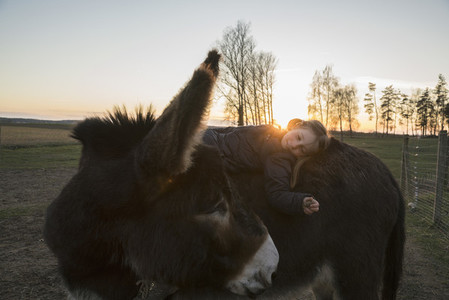 Girl laying on donkey in pasture 01
