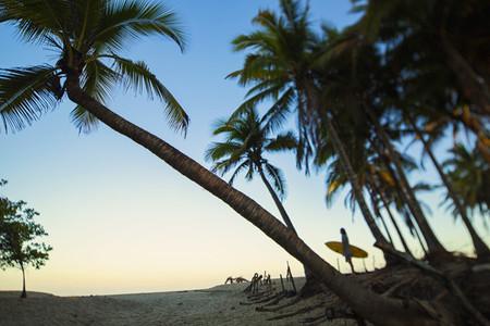 Surfer walking on idyllic 01