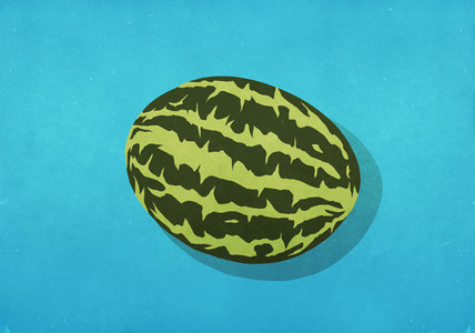 Whole watermelon on blue background 01