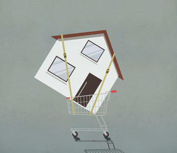 Strapped house in shopping cart 01