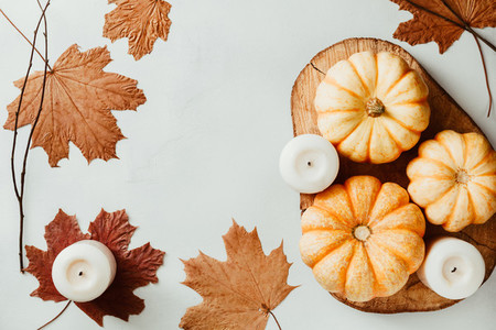 Top view of small pumpkins on a wooden board decorated Autumn ornate The concept of Thanksgiving and Autumn