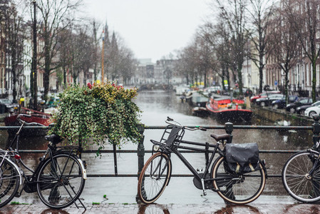 Bike on day light during the rain