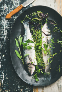 Flat lay of raw uncooked sea bass with herbs on plate