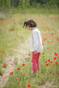 Cute little girl having fun in a poppy field