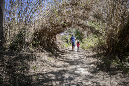 Father and little daughter walking on a path in a wetland
