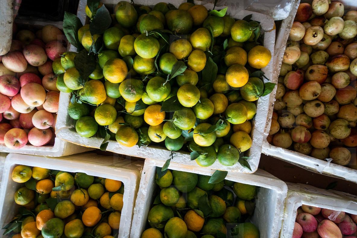 Tangerines  apples