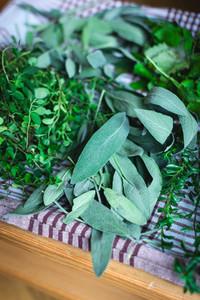 Variety of freshly cut herbs
