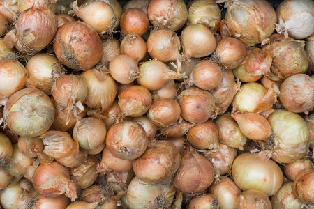 Variety of onions at market