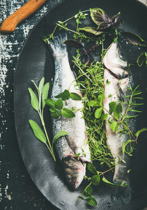 Flat lay of raw uncooked sea bass fish with herbs
