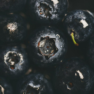 Flat lay of wet dark forest blueberries top view square crop