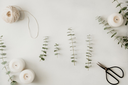 Baby blue eucalyptus branches among white candles on a table  The concept of a florist work or celebration   Top view  flat lay