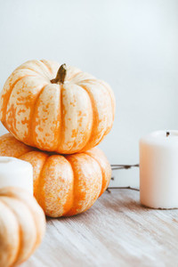 Small pumpkins and white candles still life near white wall  Autumn background
