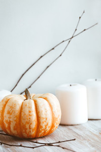 Small pumpkin and white candles still life near white wall  Autumn background