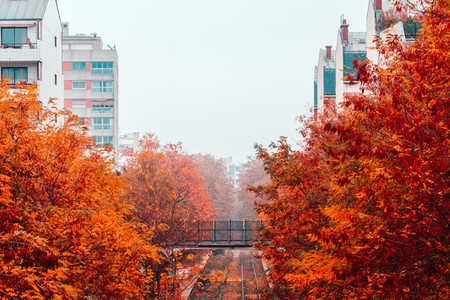 Autumn foggy view of the rails track and the bridge over them in a residential area of Paris on a rainy day