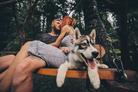 beautiful couple together with dog on a swing