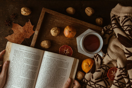 Reading book  autumn theme