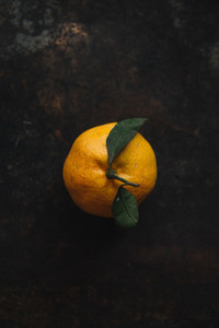 Tangerine 3