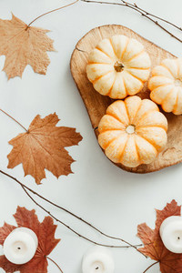 Top view of small pumpkins on a wooden board decorated Autumn ornate  The concept of Thanksgiving and Fall time