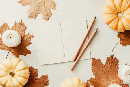 Autumn flat lay with small pumpkins fall maple leaves and blank paper notebook on a white background The concept of september and school mockup
