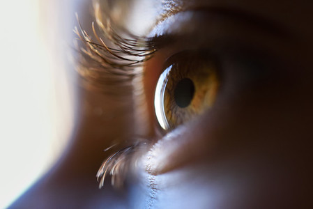 Close up of beautiful little girl brown eye